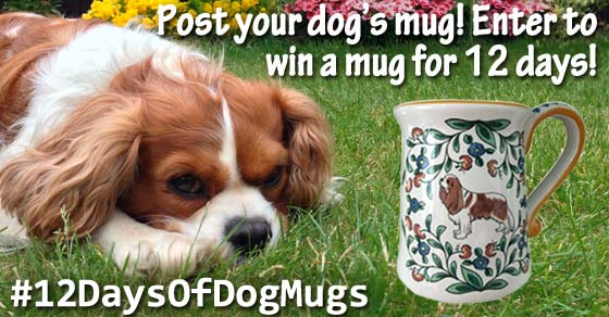 Dog Mug Giveaway from http://www.shepherds-grove.com