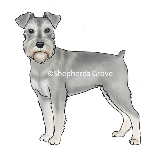 Miniature-Schnauzer-Design-by-shepherdsgrove.com