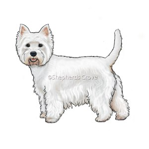 West Highland Terrier Artwork