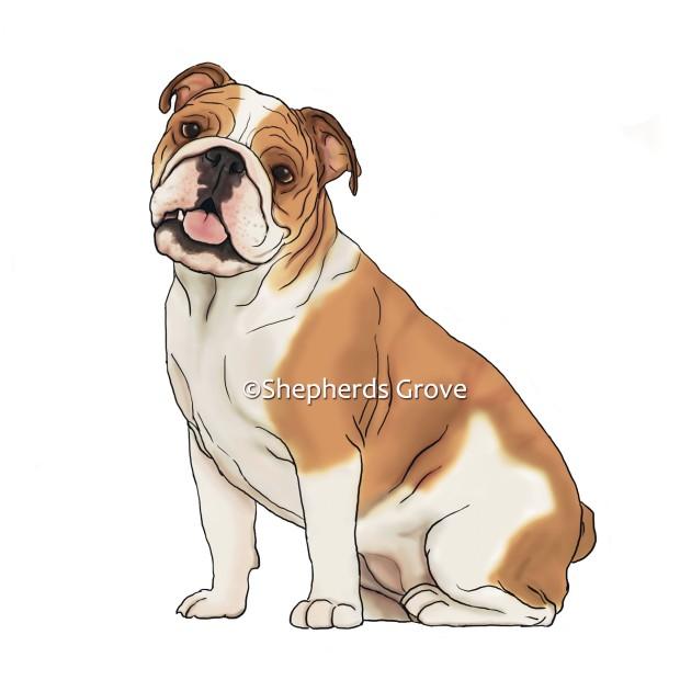 BulldogRGB