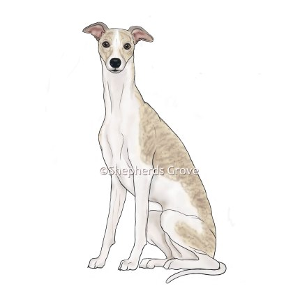 Whippet Design from shepherds-grove.com