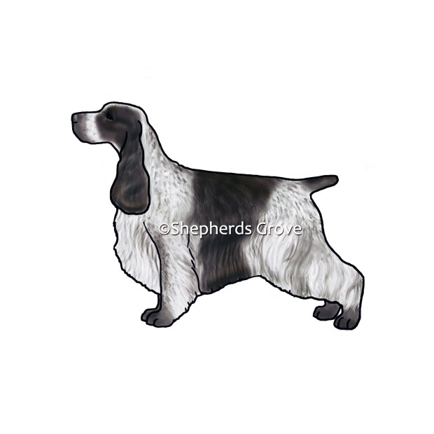 Blue-Roan-English-Cocker-Spaniel-Design